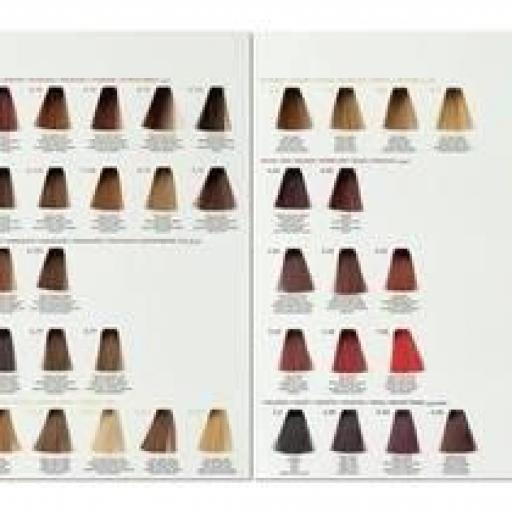 Tinte Color Pro cobres rojos 100 ml Lunel Profesional [1]