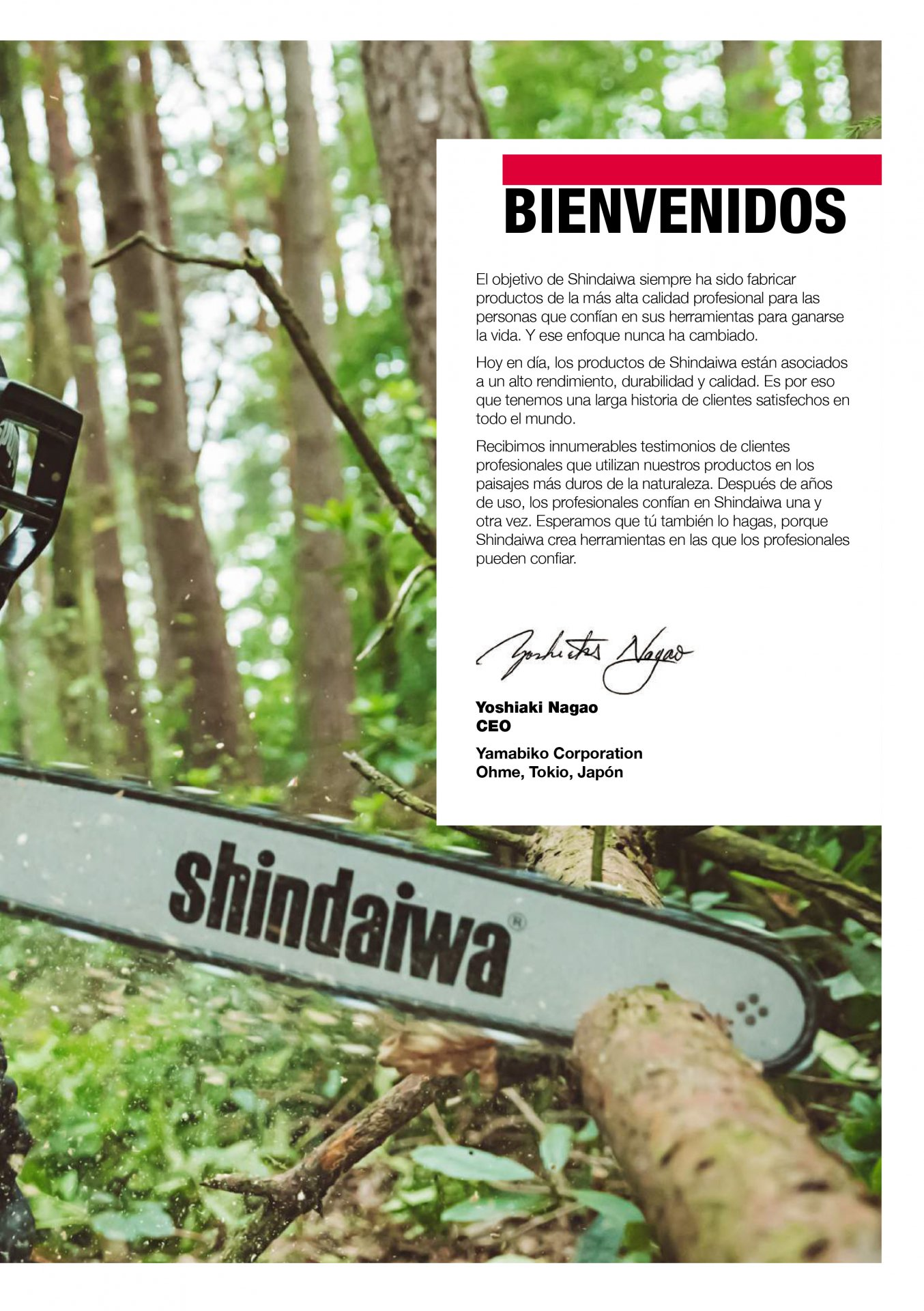 Catalogo motosierras shindaiwa echo