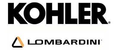 grupo-electrogeno-con-motor-diesel-lombardini-kohler-company-2.jpg