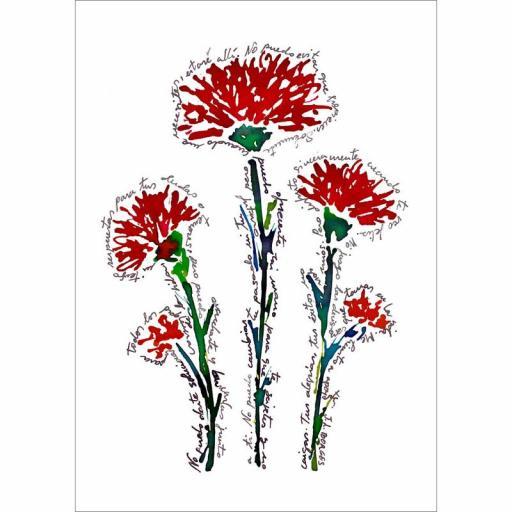 Flores-3 [0]