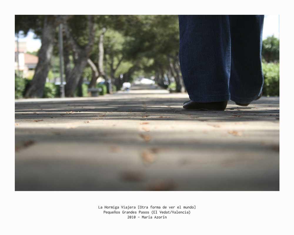 Pequeños Grandes Pasos - El Vedat (Valencia) - 2010 - Cartel