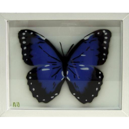 Mariposa azul [0]