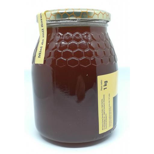 Miel Mil Flores Queen Honey 1 Kg. [1]