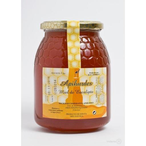 Miel de Eucalipto 100% natural