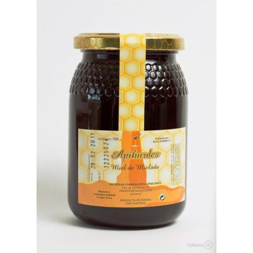Miel de Mielada 100% natural [1]