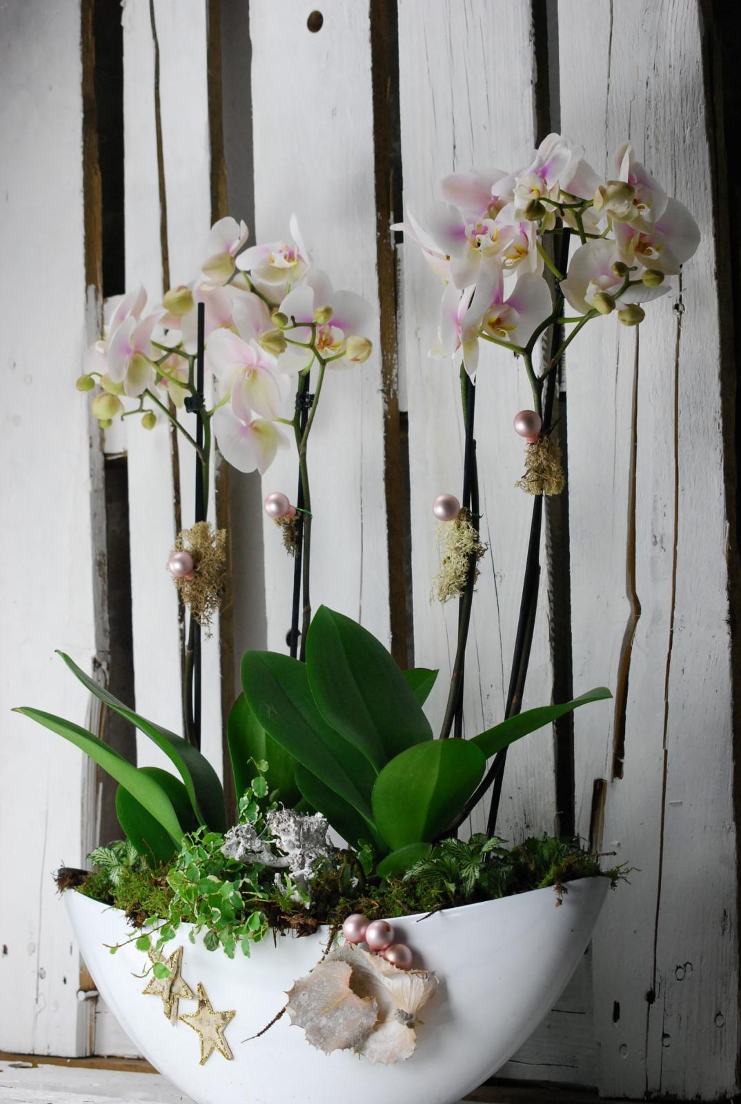 Composición de orquídeas con decoración de hojas secas y liquen