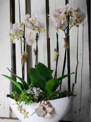 Composición de orquídeas con decoración de hojas secas y liquen [0]