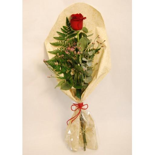 Rosa San Valentín [1]