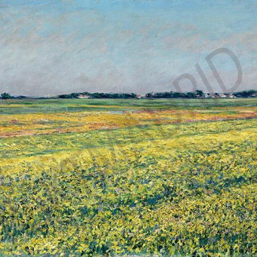 Cuadro en lienzo tamaño XXL grande apaisado pintura impresionista Calleiboite