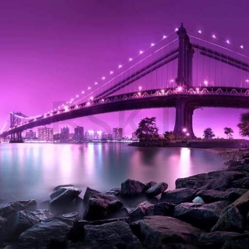 Cuadro en lienzo decorativo puente grande