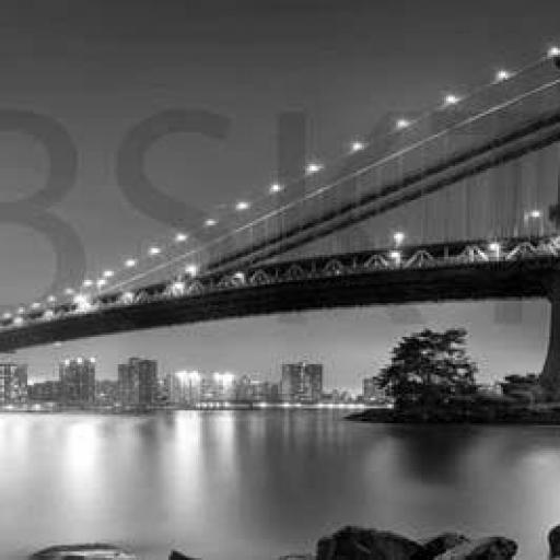 Cuadro en lienzo blanco y negro puente sobre bahía