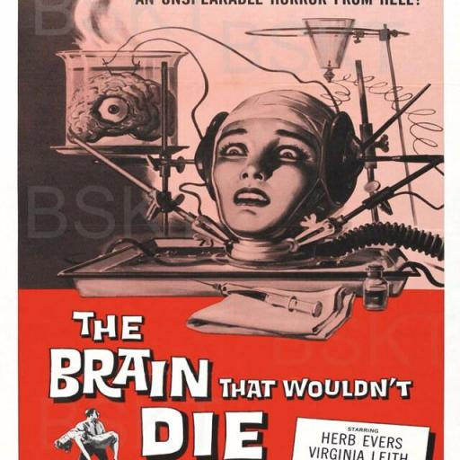 Cuadro en lienzo the brain that wouldn´t die