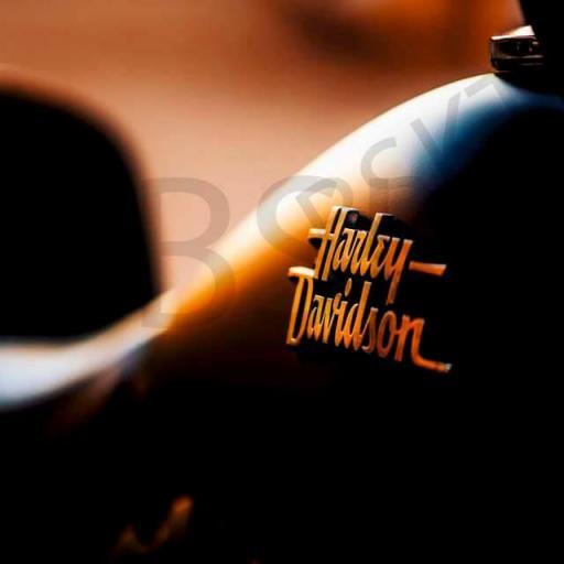 Cuadro en lienzo Harley Davidson depósito