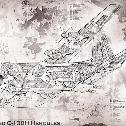Cuadro en lienzo montado sobre bastidor plano avión Hércules