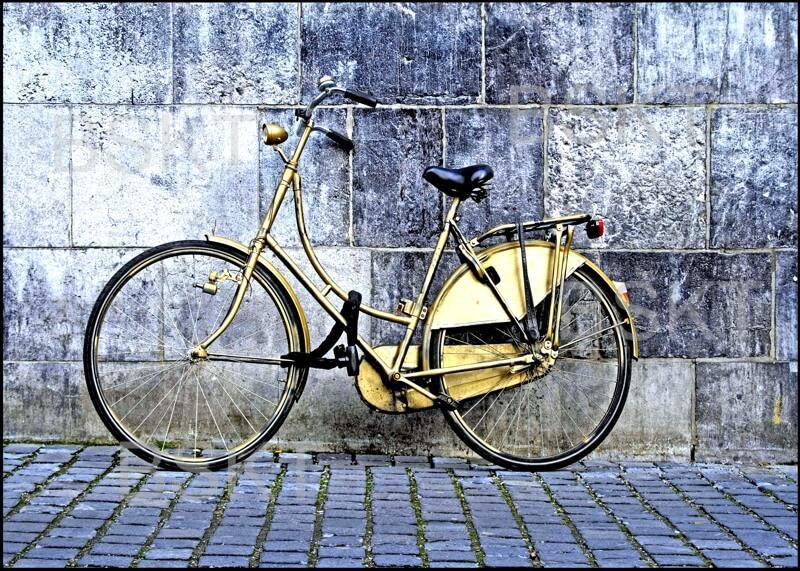 Cuadro en lienzo bicicleta vintage