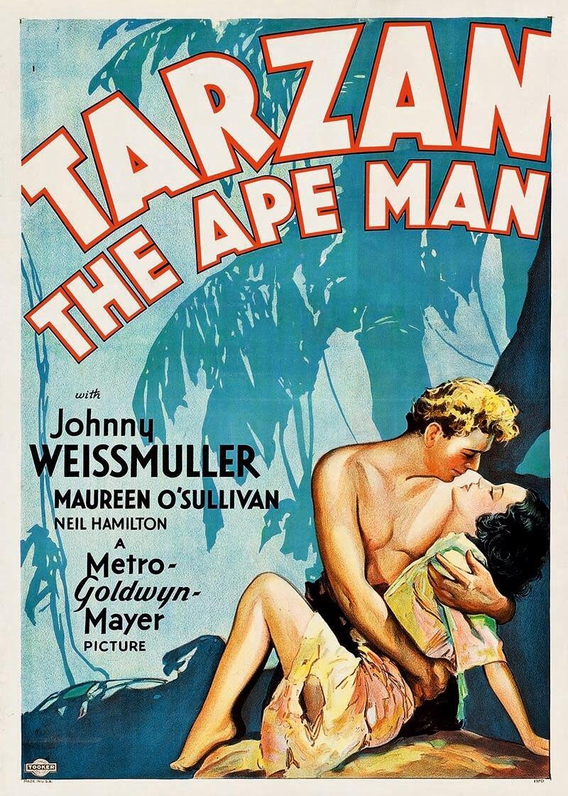 Cuadro en lienzo Tarzan el hombre mono