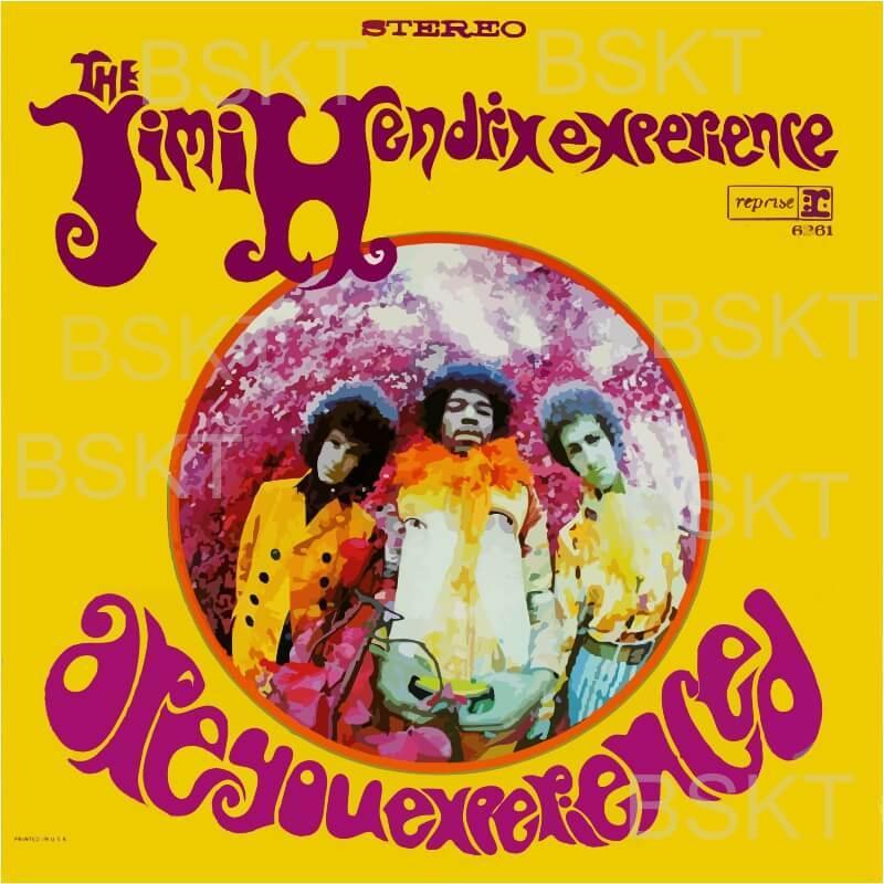 Cuadro en lienzo cuadrado Jimi Hendrix are you experienced