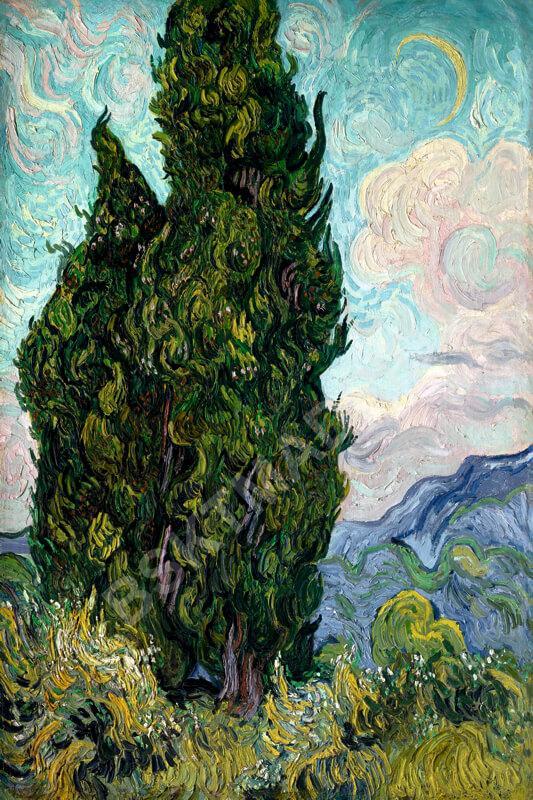 Cuadro en lienzo canvas decorativo Van Gogh cipreses alta resolución