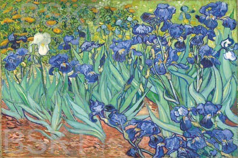 Cuadro en lienzo impresionismo Van Gogh lirios