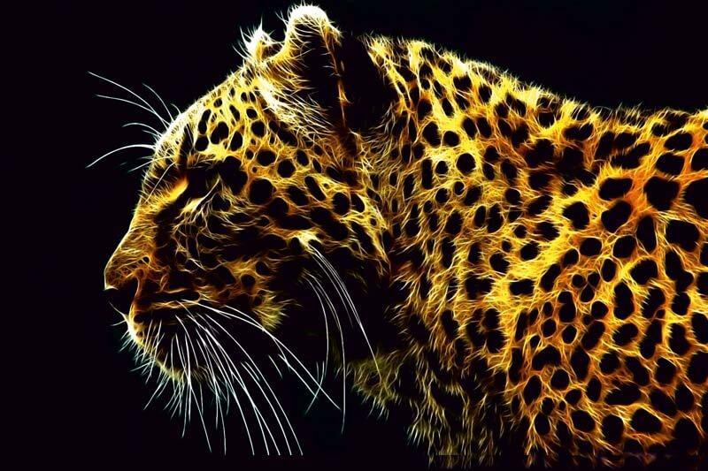 Cuadro en lienzo moderno leopardo para salón