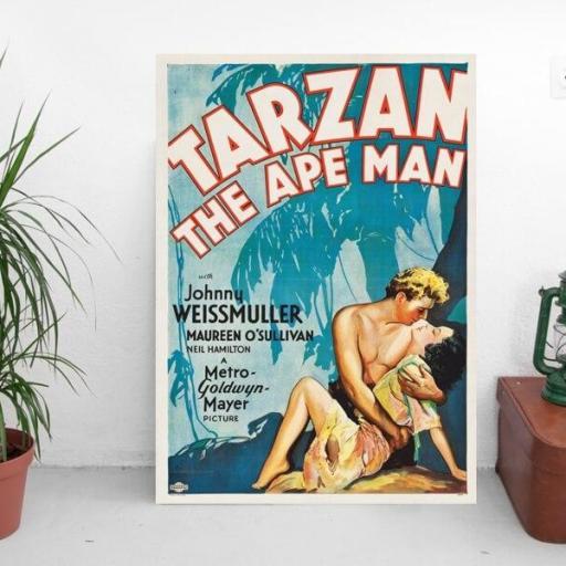 Cuadro en lienzo Tarzan el hombre mono [1]