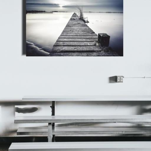Cuadro en lienzo blanco y negro laguna [1]
