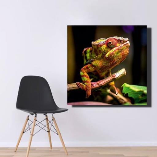 Cuadro en lienzo tamaño grande cuadrado Iguana [1]