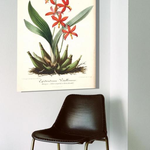 Cuadro en lienzo de inspiración botánica para salón [1]