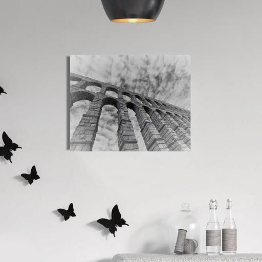 Cuadro en lienzo acueducto de Segovia blanco y negro [1]