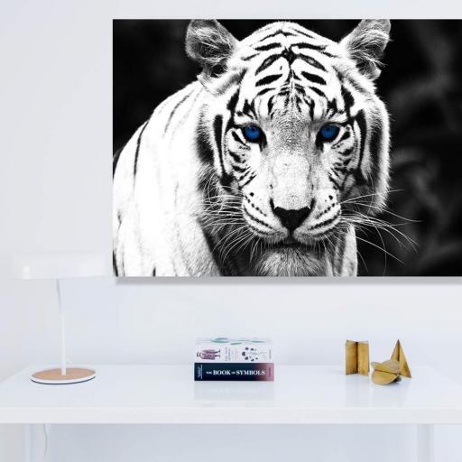 Cuadro en lienzo fotografía tigre blanco y negro tamaño grande [1]