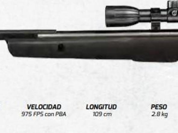 Rifle Gamo BIG CAT 1250