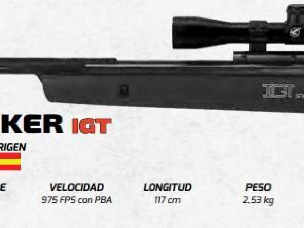 Rifle Gamo BIG CAT SILENT STALKER IGT
