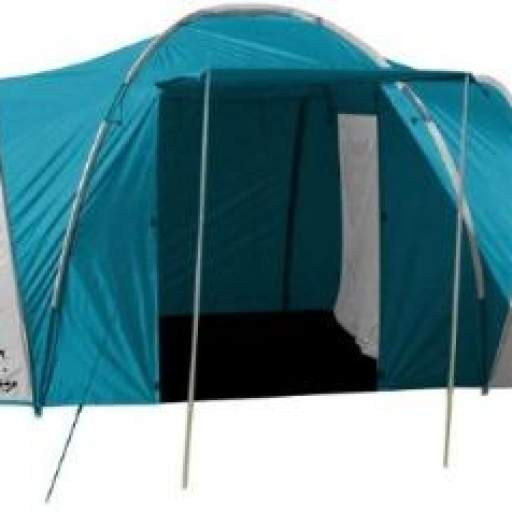 Carpa Holliday 4 P Spinit