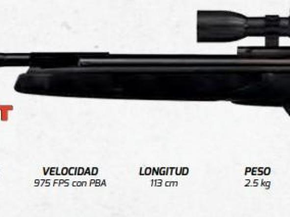 Rifle Gamo WILDCAT WHISPER IGT