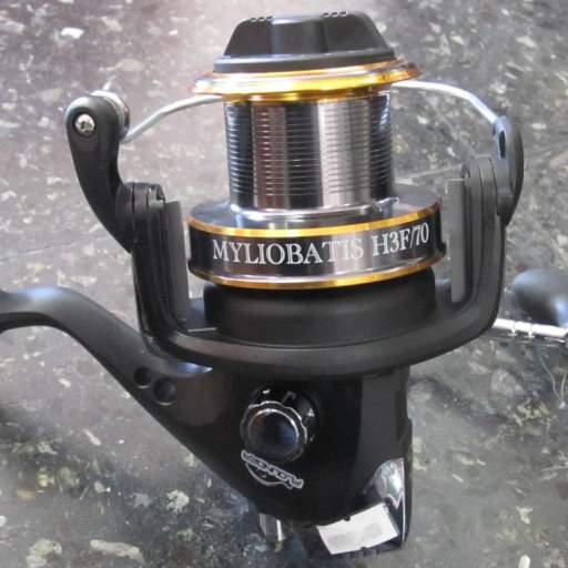 Reel Flounder Myliobatis h3f 70