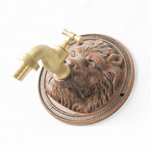 Grifo cabeza de león [3]