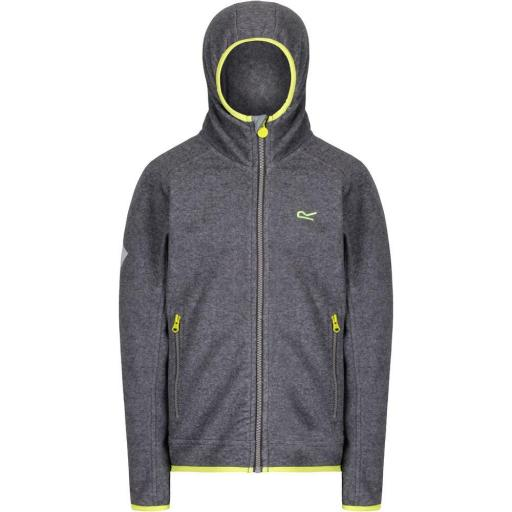 Sudadera polar Regatta Totten Rock Grey
