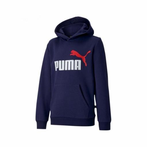 Sudadera Puma ESS 2 Col Hoody FL B. 583232 06. Azul Marino.