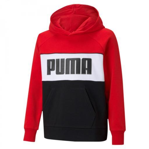 Sudadera Puma ALPHA HOODIE TR B 585892-11