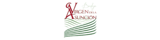 Virgen de la Asunción