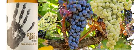 Bodegas Paco García lanza al mercado su primer vino blanco.