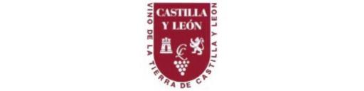 V.T Castilla y Léon