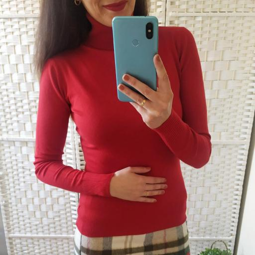 Jersey Rojo Cisne [1]