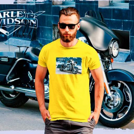 Moto Harley Davidson B/N/Gold