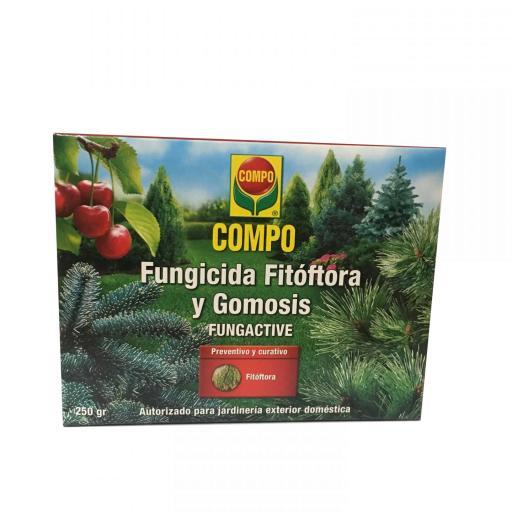 Fungicida Fitóftora y gomosis Compo 250g [1]
