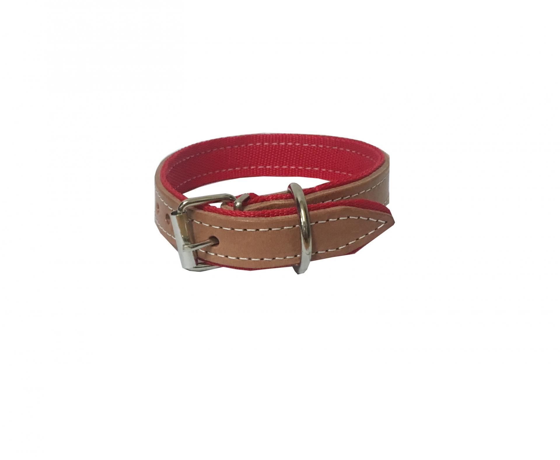 Collar perro cuero y nylon 60 cm x 3 cm