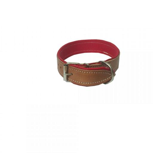 Collar perro cuero y nylon 66 cm x 4 cm  [1]
