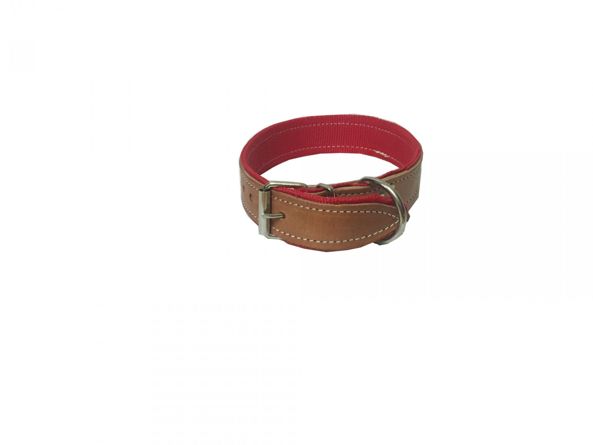 Collar perro cuero y nylon 75 cm x 4 cm