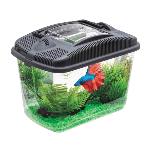 Acuario Aquael Betta Kit 3 Litros