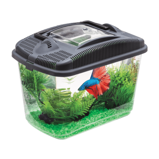 Acuario Aquael Betta Kit 3 Litros